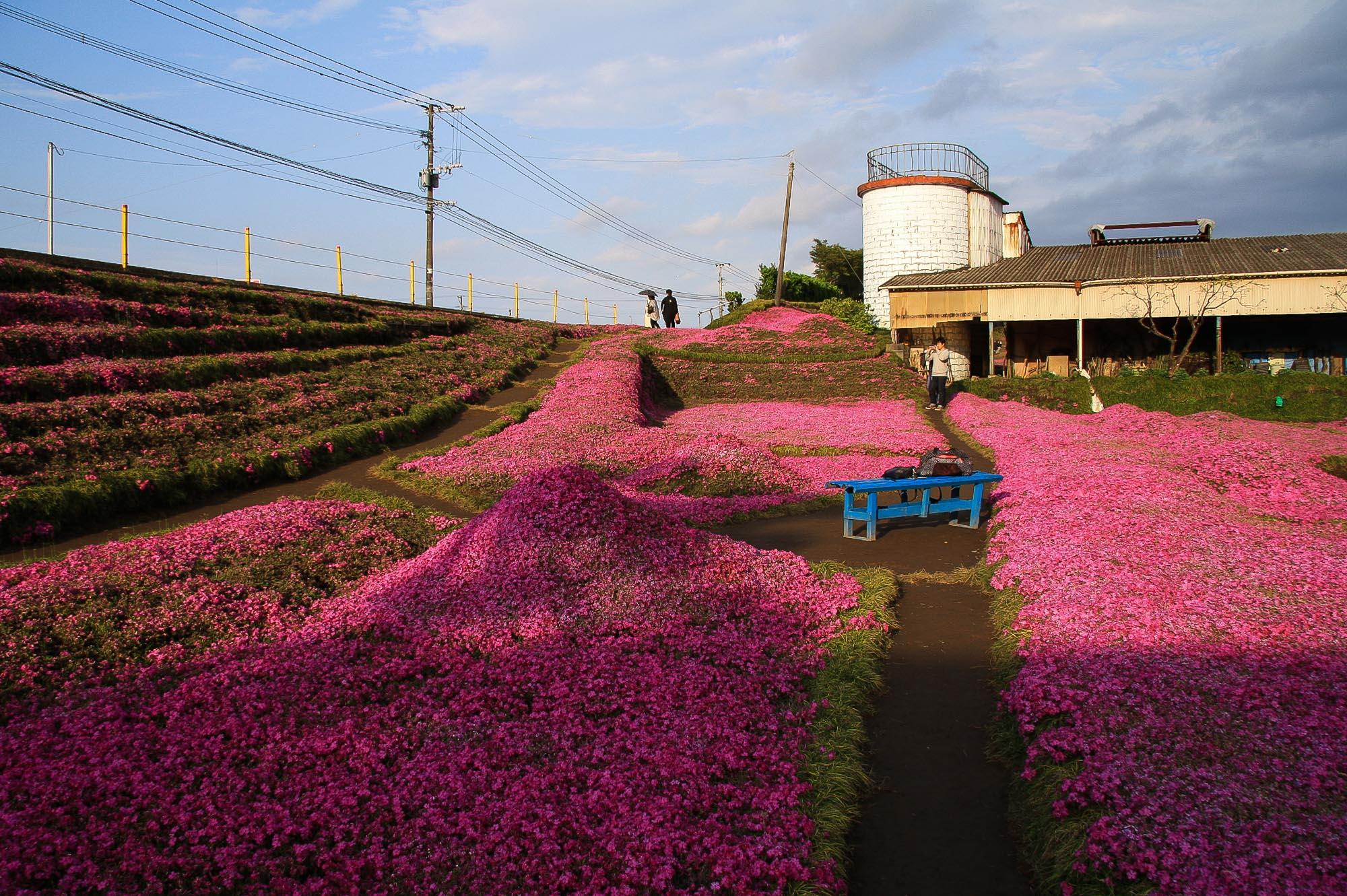 Toshiyuki Kuroki Garden 046